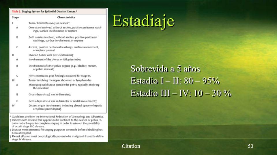 Estadiaje Citation53 Sobrevida a 5 años Estadio I – II: 80 – 95% Estadio III – IV: 10 – 30 % Sobrevida a 5 años Estadio I – II: 80 – 95% Estadio III –