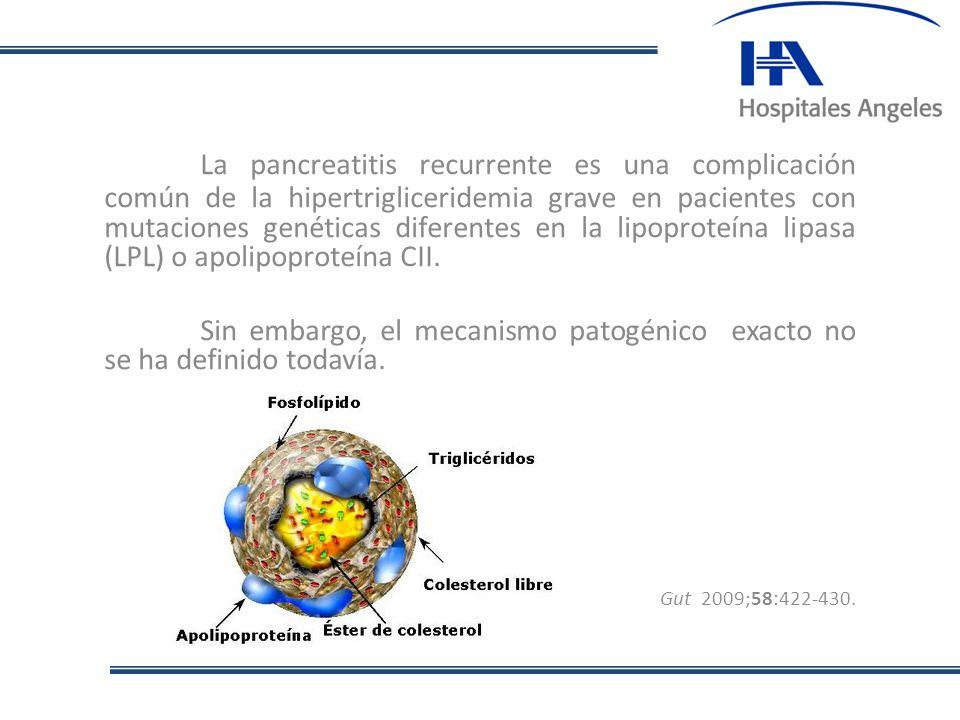 La pancreatitis recurrente es una complicación común de la hipertrigliceridemia grave en pacientes con mutaciones genéticas diferentes en la lipoprote
