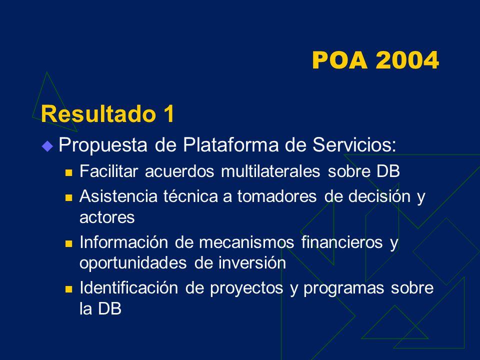 POA 2004 Marco Conceptual Reforzar gestión ambiental en las regiones integrado a los planes existentes Generar capacidades locales, regionales y nacionales sobre la CUS Participación de diferentes actores.