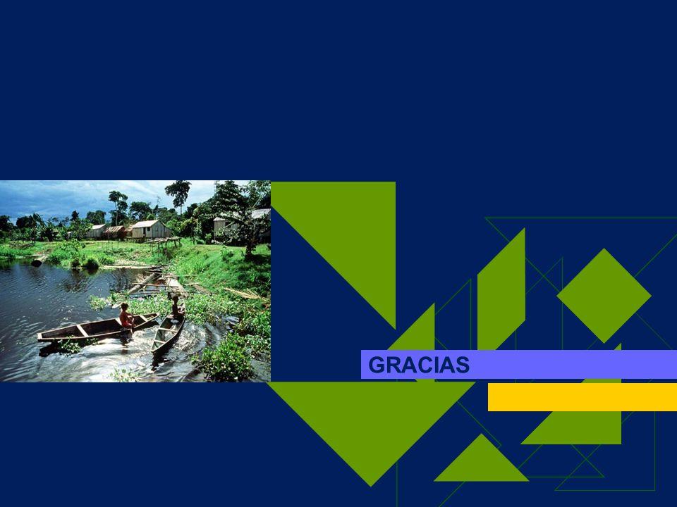 SIAMAZONIA 2004 Integración a nivel nacional (CHM, SINIA, SINIDIB, SIINSITU, entre otros) Análisis de estadísticas y adaptación de productos y servicios según demanda Identificación de usuarios e implementación de servicios Incrementar participación de nodos con herramientas de promoción, capacitación y participación