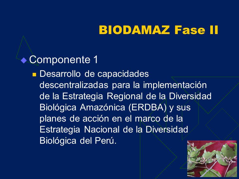 POG, Resultados 2003 POA 2004 COMPONENTE 1 Blgo. Luis Campos Baca Coordinador