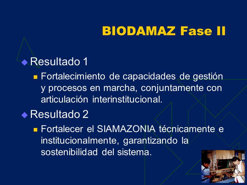 BIODAMAZ Fase II Componente 1 Desarrollo de capacidades descentralizadas para la implementación de la Estrategia Regional de la Diversidad Biológica A
