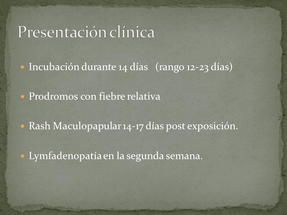 Incubación durante 14 días (rango 12-23 días) Prodromos con fiebre relativa Rash Maculopapular 14-17 días post exposición. Lymfadenopatía en la segund