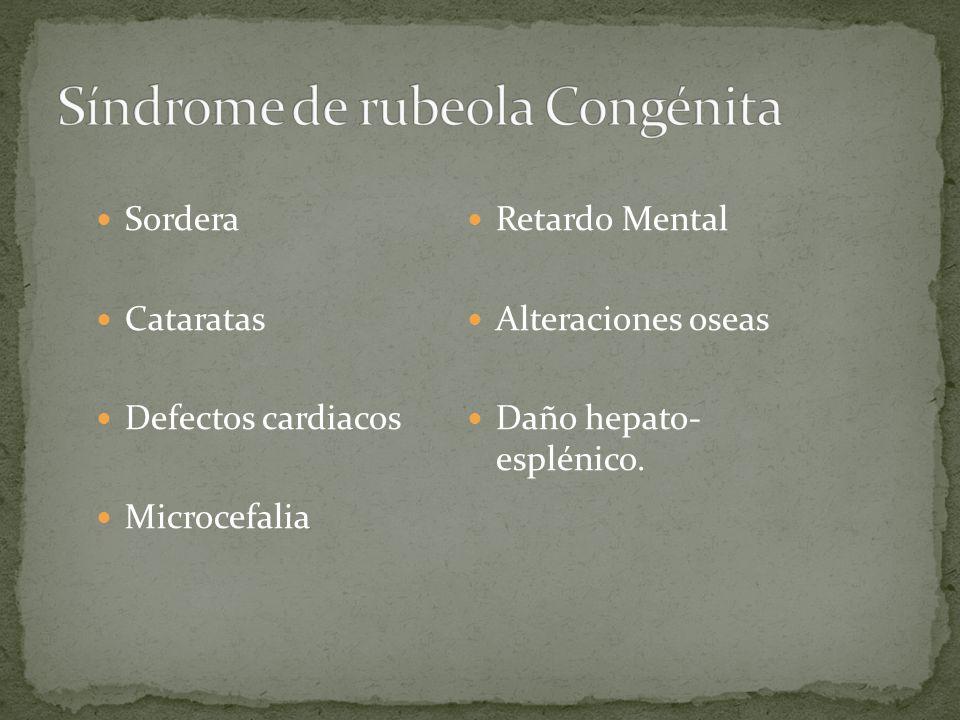 Sordera Cataratas Defectos cardiacos Microcefalia Retardo Mental Alteraciones oseas Daño hepato- esplénico.