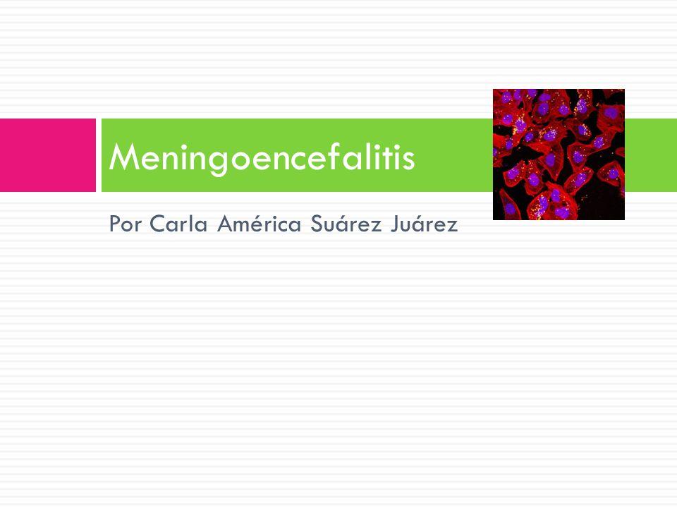 Por Carla América Suárez Juárez Meningoencefalitis