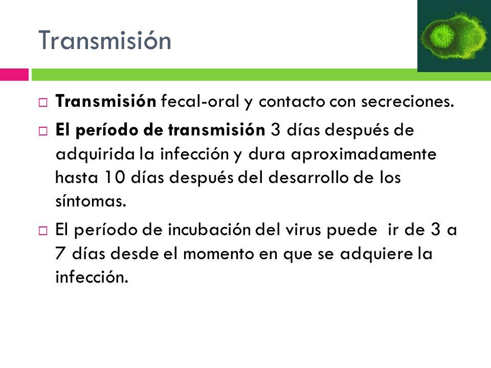 Transmisión Transmisión fecal-oral y contacto con secreciones. El período de transmisión 3 días después de adquirida la infección y dura aproximadamen