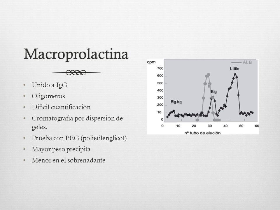 Macroprolactina Unido a IgG Oligomeros Difícil cuantificación Cromatografía por dispersión de geles.