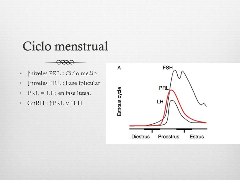 Ciclo menstrualCiclo menstrual niveles PRL : Ciclo medio niveles PRL : Fase folicular PRL = LH: en fase lútea.