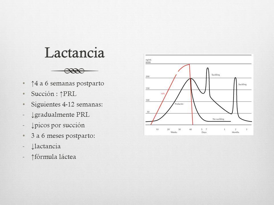 Lactancia 4 a 6 semanas postparto Succión : PRL Siguientes 4-12 semanas: - gradualmente PRL - picos por succión 3 a 6 meses postparto: - lactancia - fórmula láctea