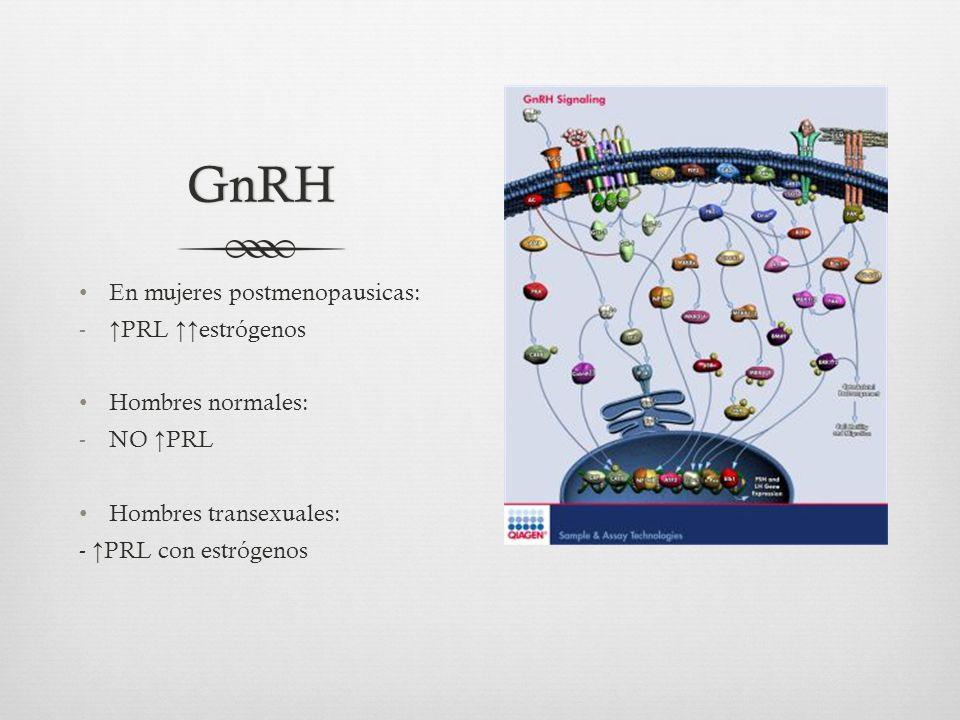 GnRH En mujeres postmenopausicas: - PRL estrógenos Hombres normales: -NO PRL Hombres transexuales: - PRL con estrógenos