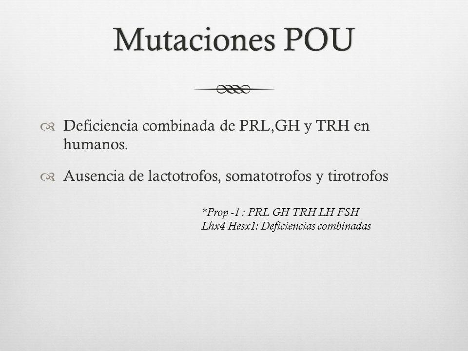 Mutaciones POUMutaciones POU Deficiencia combinada de PRL,GH y TRH en humanos.