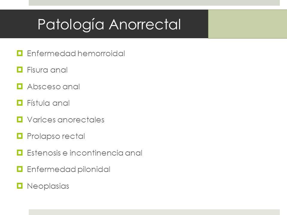 Patología Anorrectal Enfermedad hemorroidal Fisura anal Absceso anal Fístula anal Varices anorectales Prolapso rectal Estenosis e incontinencia anal Enfermedad pilonidal Neoplasias