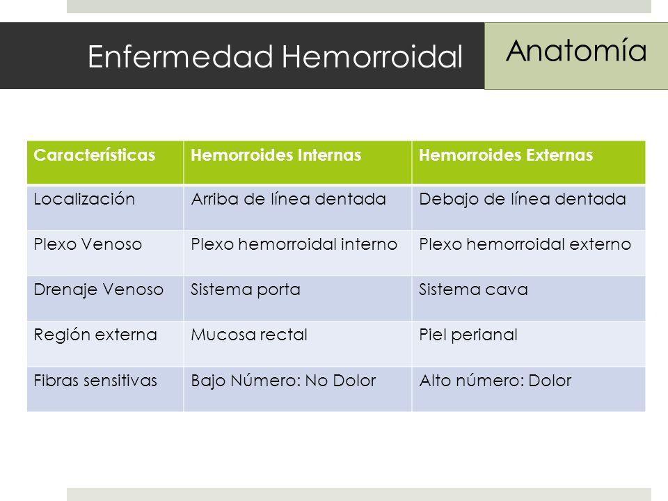 Enfermedad Hemorroidal Anatomía CaracterísticasHemorroides InternasHemorroides Externas LocalizaciónArriba de línea dentadaDebajo de línea dentada Plexo VenosoPlexo hemorroidal internoPlexo hemorroidal externo Drenaje VenosoSistema portaSistema cava Región externaMucosa rectalPiel perianal Fibras sensitivasBajo Número: No DolorAlto número: Dolor