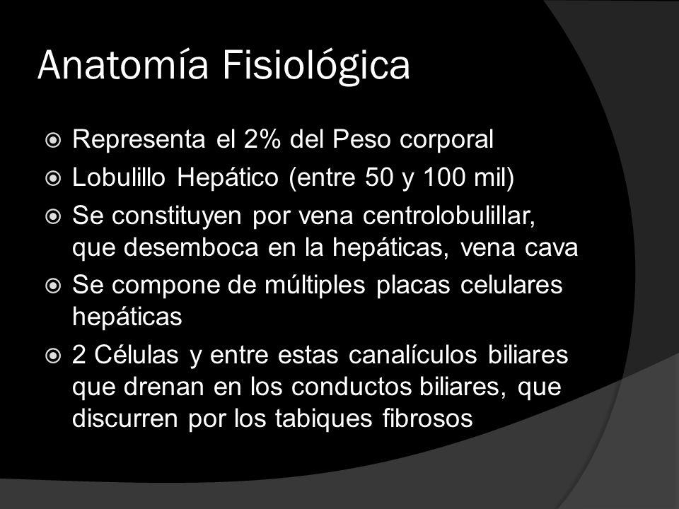 Anatomía Fisiológica Representa el 2% del Peso corporal Lobulillo Hepático (entre 50 y 100 mil) Se constituyen por vena centrolobulillar, que desemboc