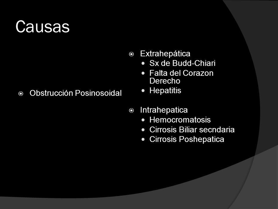 Causas Obstrucción Posinosoidal Extrahepática Sx de Budd-Chiari Falta del Corazon Derecho Hepatitis Intrahepatica Hemocromatosis Cirrosis Biliar secnd