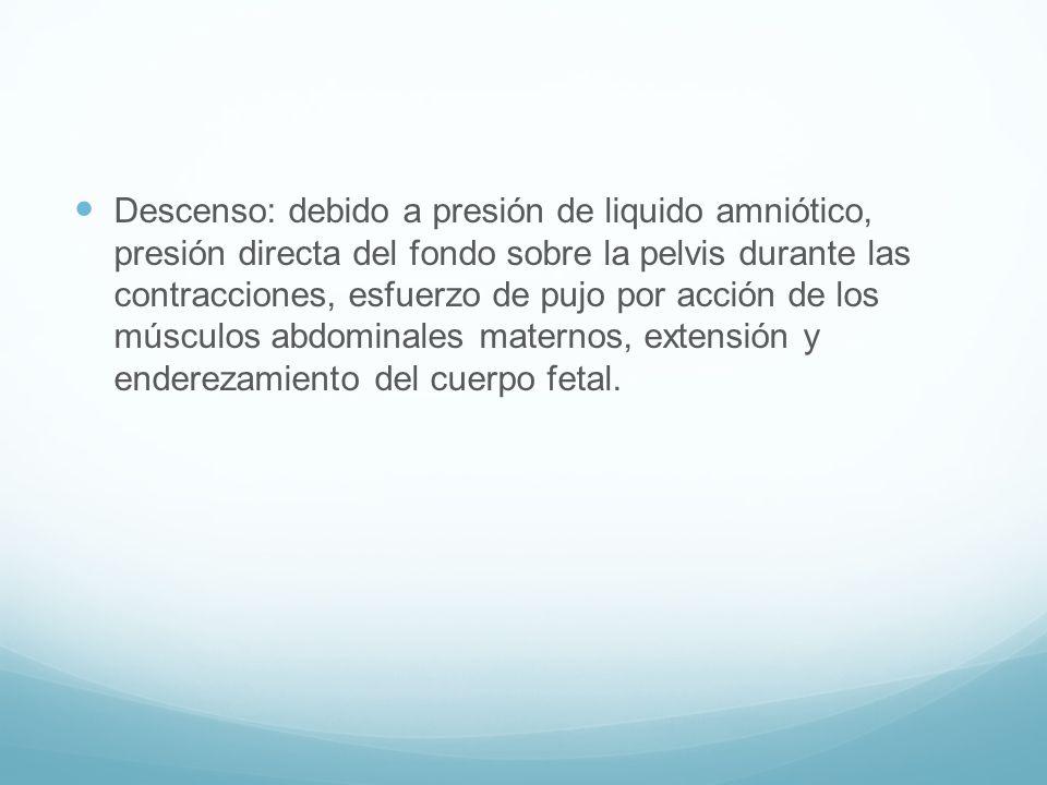 Descenso: debido a presión de liquido amniótico, presión directa del fondo sobre la pelvis durante las contracciones, esfuerzo de pujo por acción de l