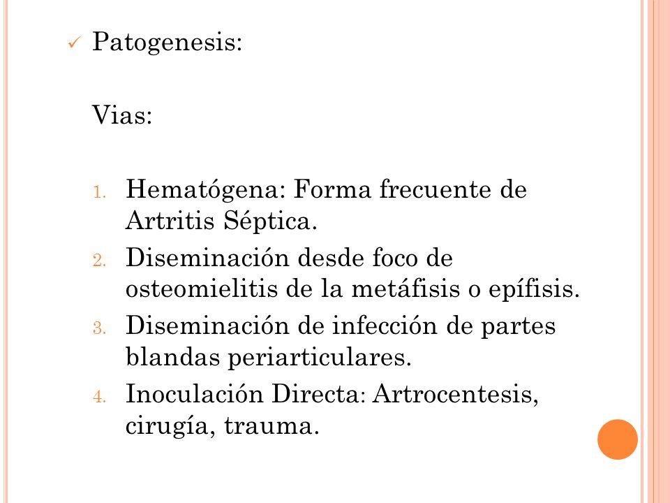 Patogenesis: Vias: 1. Hematógena: Forma frecuente de Artritis Séptica. 2. Diseminación desde foco de osteomielitis de la metáfisis o epífisis. 3. Dise