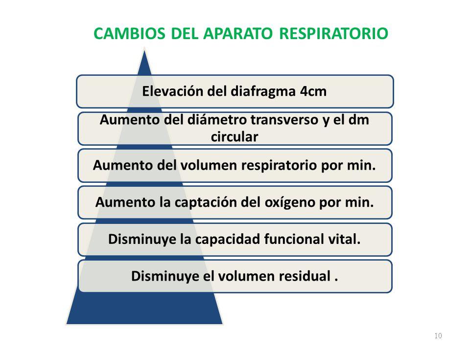 CAMBIOS DEL APARATO RESPIRATORIO 10 Elevación del diafragma 4cm Aumento del diámetro transverso y el dm circular Aumento del volumen respiratorio por min.Aumento la captación del oxígeno por min.Disminuye la capacidad funcional vital.Disminuye el volumen residual.