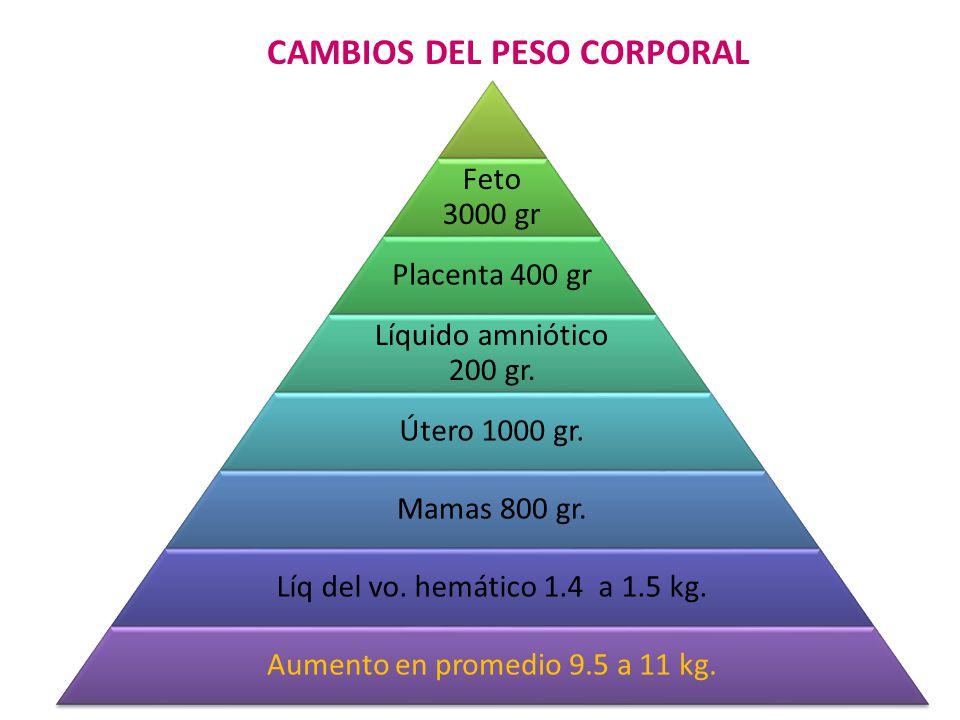 CAMBIOS DEL PESO CORPORAL 17 Feto 3000 gr Placenta 400 gr Líquido amniótico 200 gr.