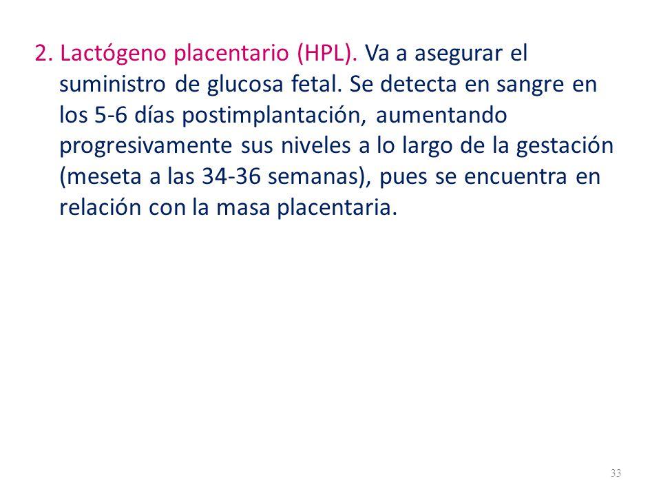 2.Lactógeno placentario (HPL). Va a asegurar el suministro de glucosa fetal.