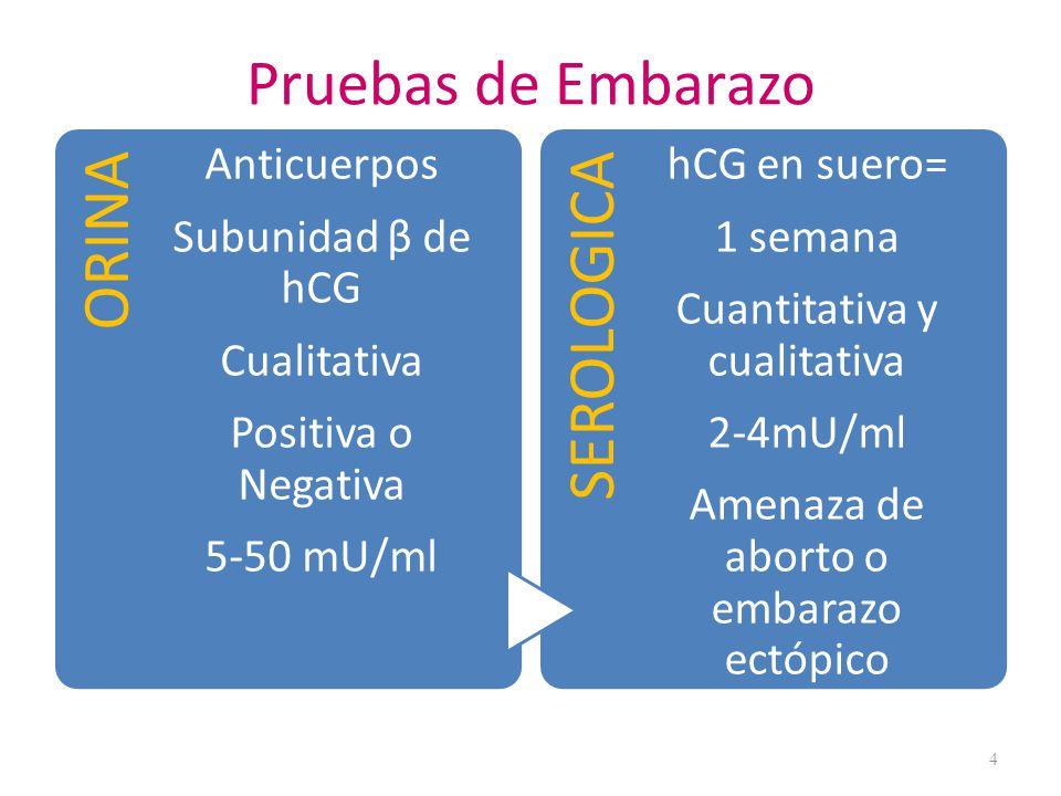Promedio : Colesterol 245 ± 10mg/dL LDL 148 ± 5mg/dL HDL 59 ± 3mg/dL Postparto decrecen La lactancia acelera la tasa de decremento