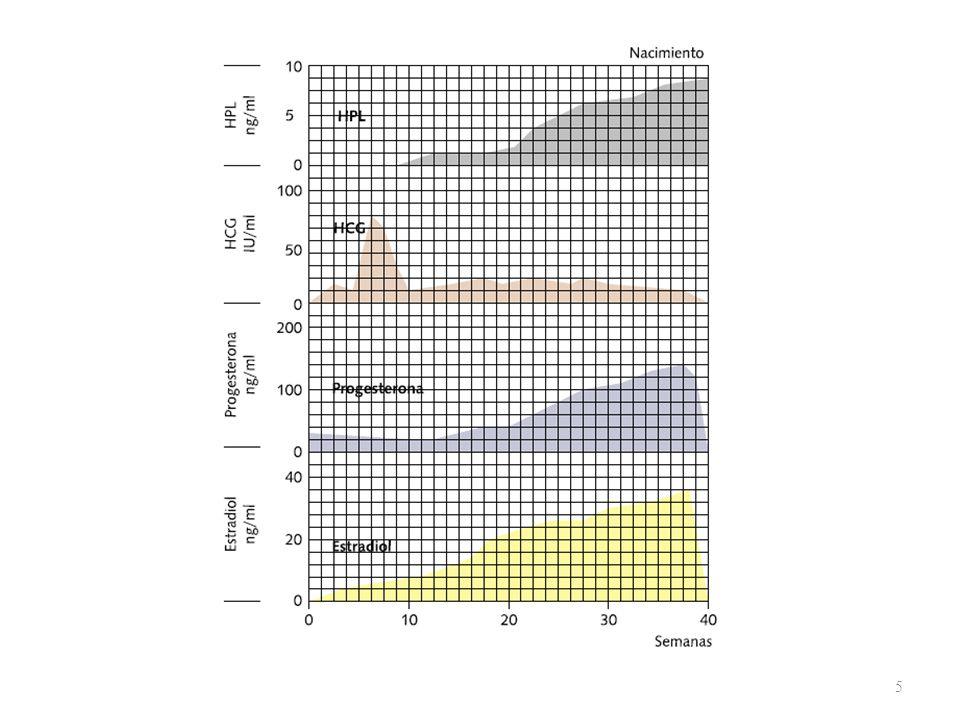 26 SIGNOS Signo de Chadwick: Lividez de la mucosa vagina Signo de Oslander:Pulso vaginal de la arteria uterina a través de los fondos de saco vaginales laterales Signo de Ladin:Punto de disminución de la consistencia en la línea media de la cara anterior del istmo uterino Signo de Pinard:Peloteo fetal vaginal Signo de Hegar:Disociación cuerpo-cuello reblandecimiento y aumento de la elasticidad del istmo uterino Signo de Braum- Fernwald: Reblandecimiento selectivo del cuerpo uterino en la zona de implantación ovular Signo de Dickinson:Morfología esférica o globulosa del útero Signo de Noble- Budin: Ocupación de los fondos de saco vaginales laterales por el útero esférico y aumentado de tamaño Signo de Piskacek:Morfología asimétrica del útero por la implantación ovular en el cuerno o cara lateral uterinas