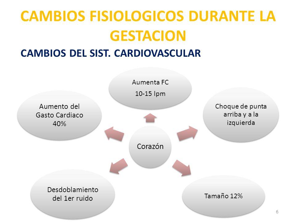 7 Circulatorio Aumenta 45% Vol.