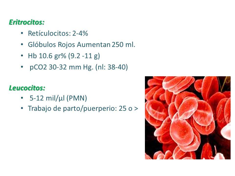 PLACENTA Función decisiva en la nutrición, crecimiento y metabolismo fetal, y desarrolla una actividad endocrina muy importante.