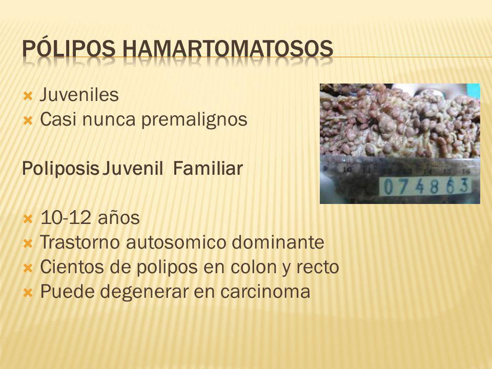Juveniles Casi nunca premalignos Poliposis Juvenil Familiar 10-12 años Trastorno autosomico dominante Cientos de polipos en colon y recto Puede degene