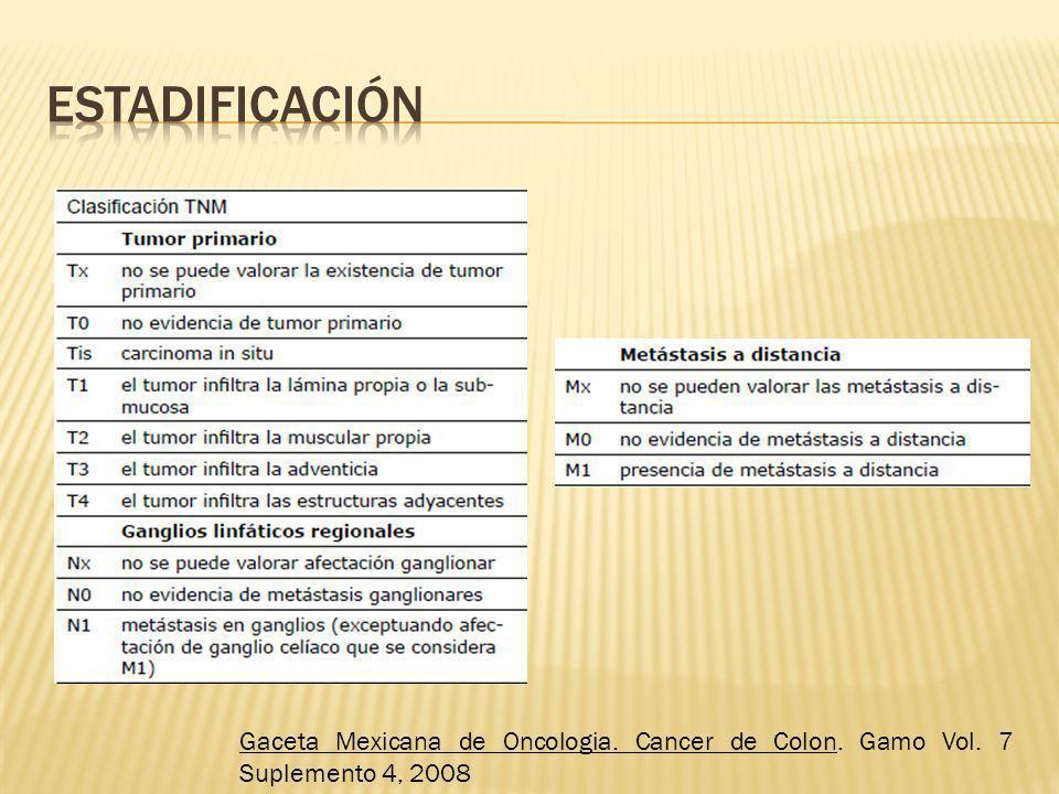 Gaceta Mexicana de Oncologia. Cancer de Colon. Gamo Vol. 7 Suplemento 4, 2008