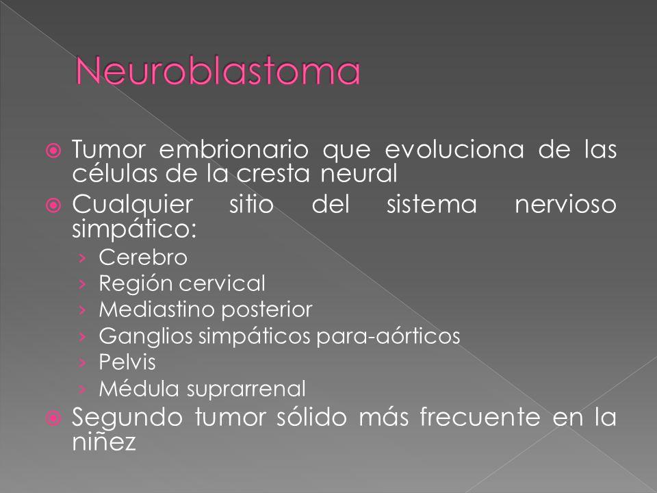 Tumor embrionario que evoluciona de las células de la cresta neural Cualquier sitio del sistema nervioso simpático: Cerebro Región cervical Mediastino posterior Ganglios simpáticos para-aórticos Pelvis Médula suprarrenal Segundo tumor sólido más frecuente en la niñez