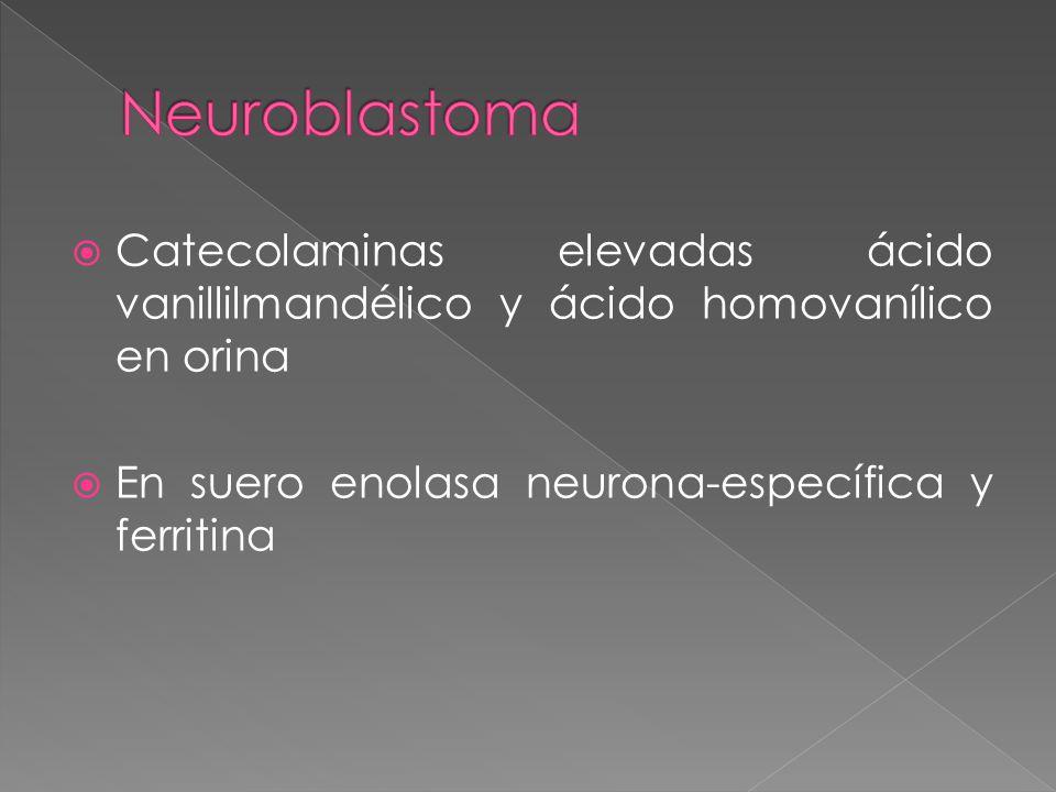 Catecolaminas elevadas ácido vanillilmandélico y ácido homovanílico en orina En suero enolasa neurona-específica y ferritina