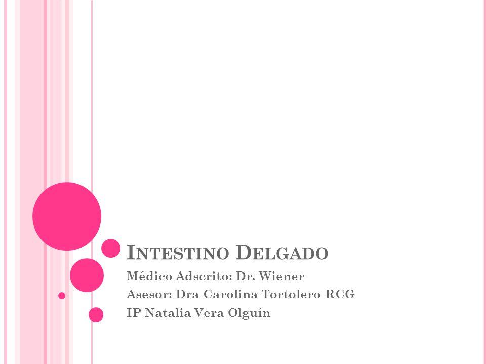 I NTESTINO D ELGADO Médico Adscrito: Dr. Wiener Asesor: Dra Carolina Tortolero RCG IP Natalia Vera Olguín