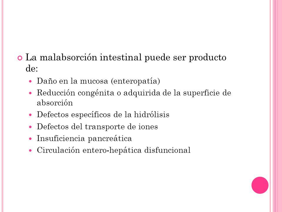 La malabsorción intestinal puede ser producto de: Daño en la mucosa (enteropatía) Reducción congénita o adquirida de la superficie de absorción Defect