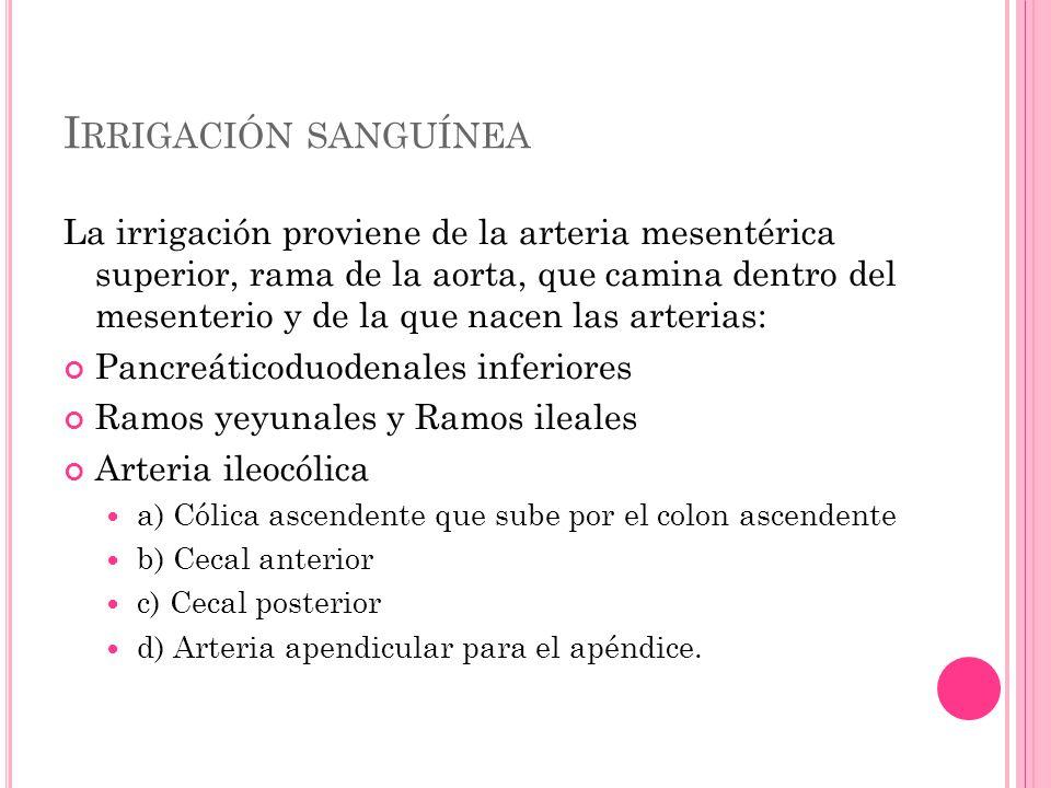 OTRAS CAUSAS Enfermedad isquémica del intestino.