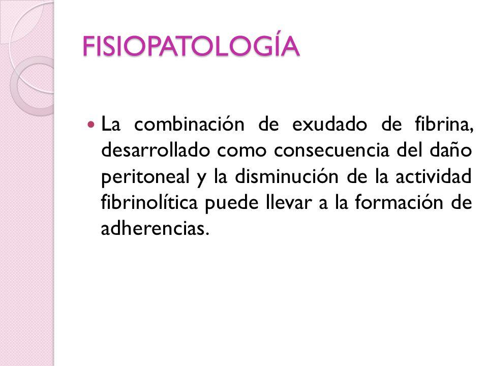 FISIOPATOLOGÍA La combinación de exudado de fibrina, desarrollado como consecuencia del daño peritoneal y la disminución de la actividad fibrinolítica