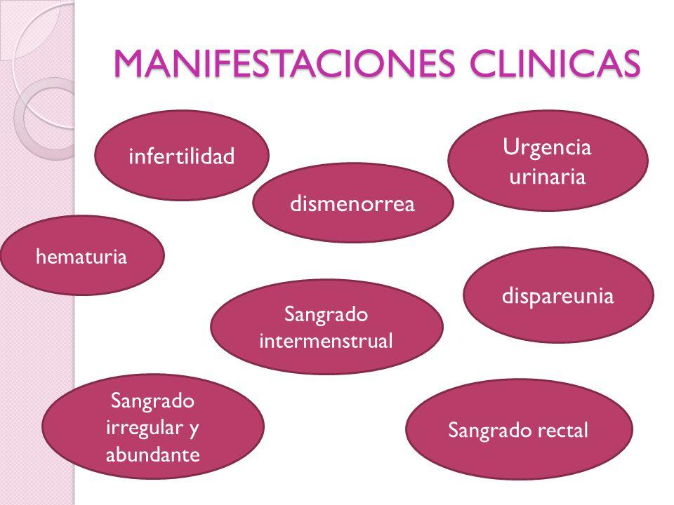 MANIFESTACIONES CLINICAS infertilidad dispareunia Urgencia urinaria dismenorrea hematuria Sangrado intermenstrual Sangrado rectal Sangrado irregular y