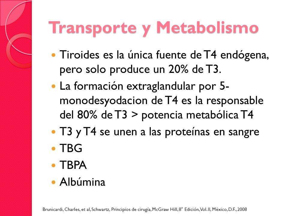 Transporte y Metabolismo Tiroides es la única fuente de T4 endógena, pero solo produce un 20% de T3. La formación extraglandular por 5- monodesyodacio