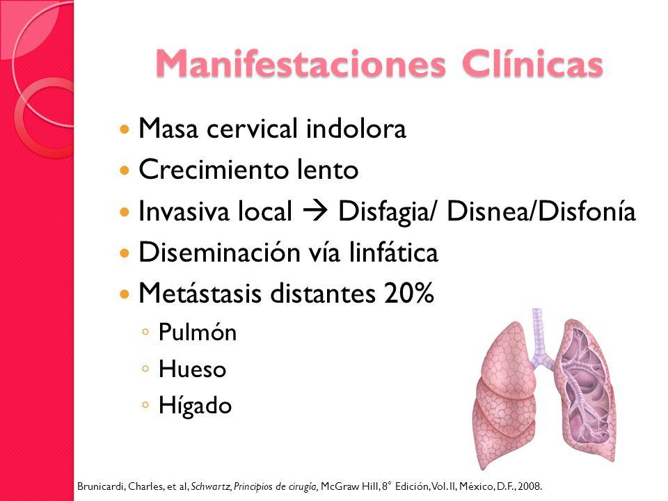 Manifestaciones Clínicas Masa cervical indolora Crecimiento lento Invasiva local Disfagia/ Disnea/Disfonía Diseminación vía linfática Metástasis dista