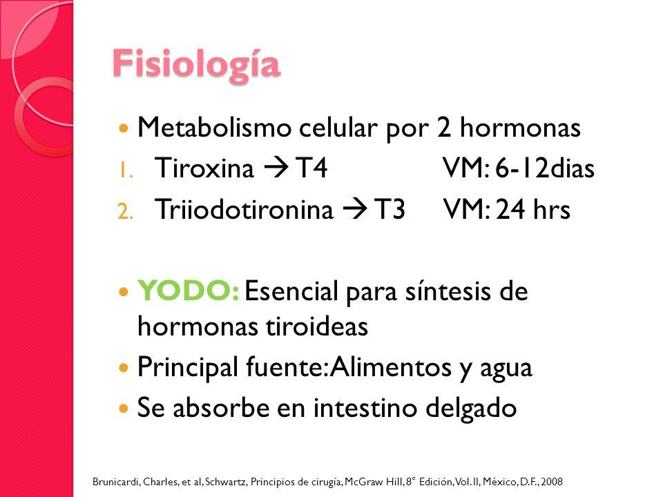 Fisiología Metabolismo celular por 2 hormonas 1. Tiroxina T4 VM: 6-12dias 2. Triiodotironina T3 VM: 24 hrs YODO: Esencial para síntesis de hormonas ti
