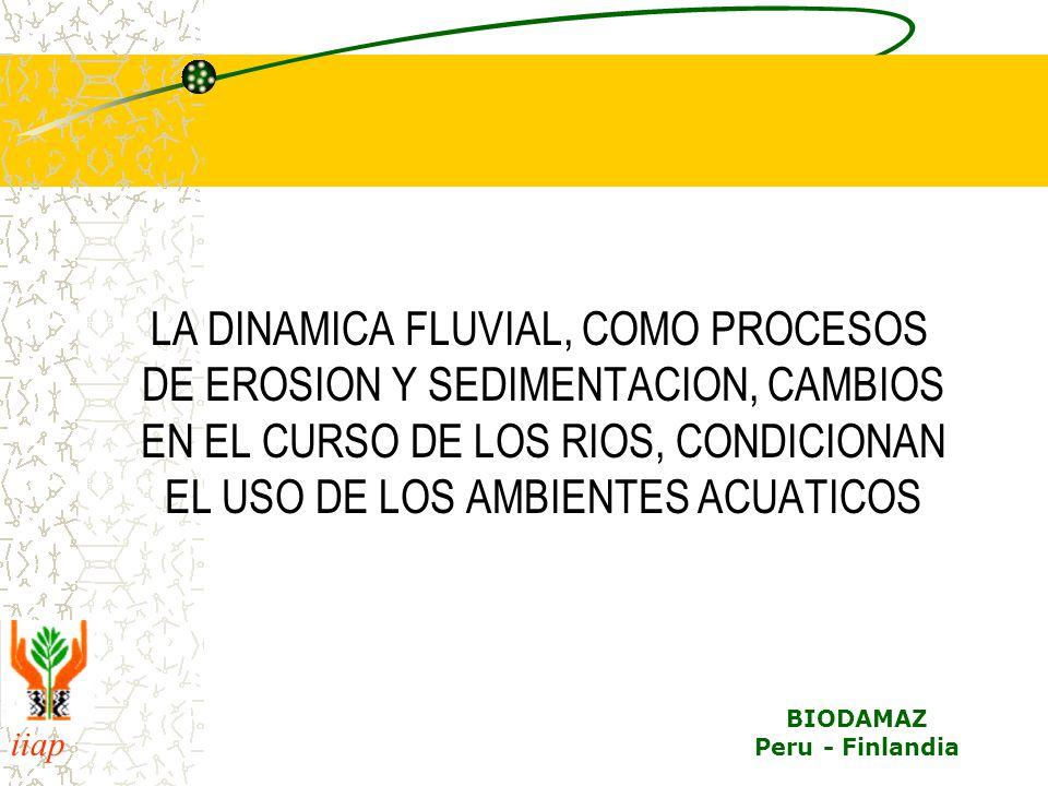 iiap BIODAMAZ Peru - Finlandia LA DINAMICA FLUVIAL, COMO PROCESOS DE EROSION Y SEDIMENTACION, CAMBIOS EN EL CURSO DE LOS RIOS, CONDICIONAN EL USO DE L