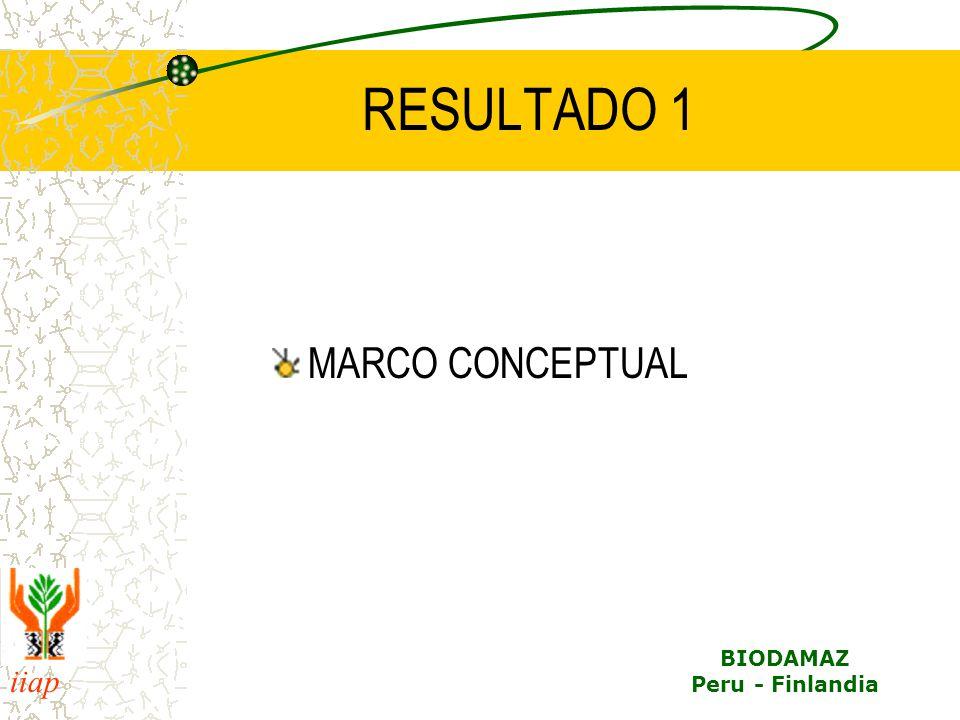 iiap BIODAMAZ Peru - Finlandia RESULTADOS PREVISTOS PARA EL 2004 1.