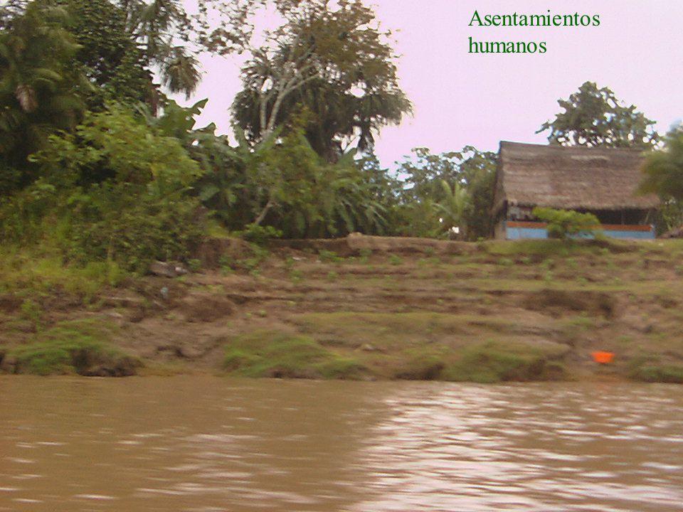 iiap BIODAMAZ Peru - Finlandia Asentamientos humanos