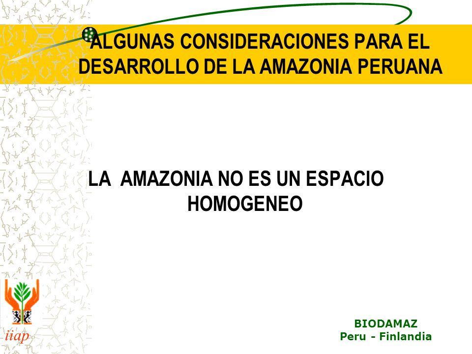 iiap BIODAMAZ Peru - Finlandia ALGUNAS CONSIDERACIONES PARA EL DESARROLLO DE LA AMAZONIA PERUANA LA AMAZONIA NO ES UN ESPACIO HOMOGENEO