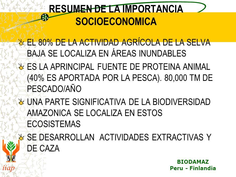 iiap BIODAMAZ Peru - Finlandia RESUMEN DE LA IMPORTANCIA SOCIOECONOMICA EL 80% DE LA ACTIVIDAD AGRÍCOLA DE LA SELVA BAJA SE LOCALIZA EN ÁREAS INUNDABL