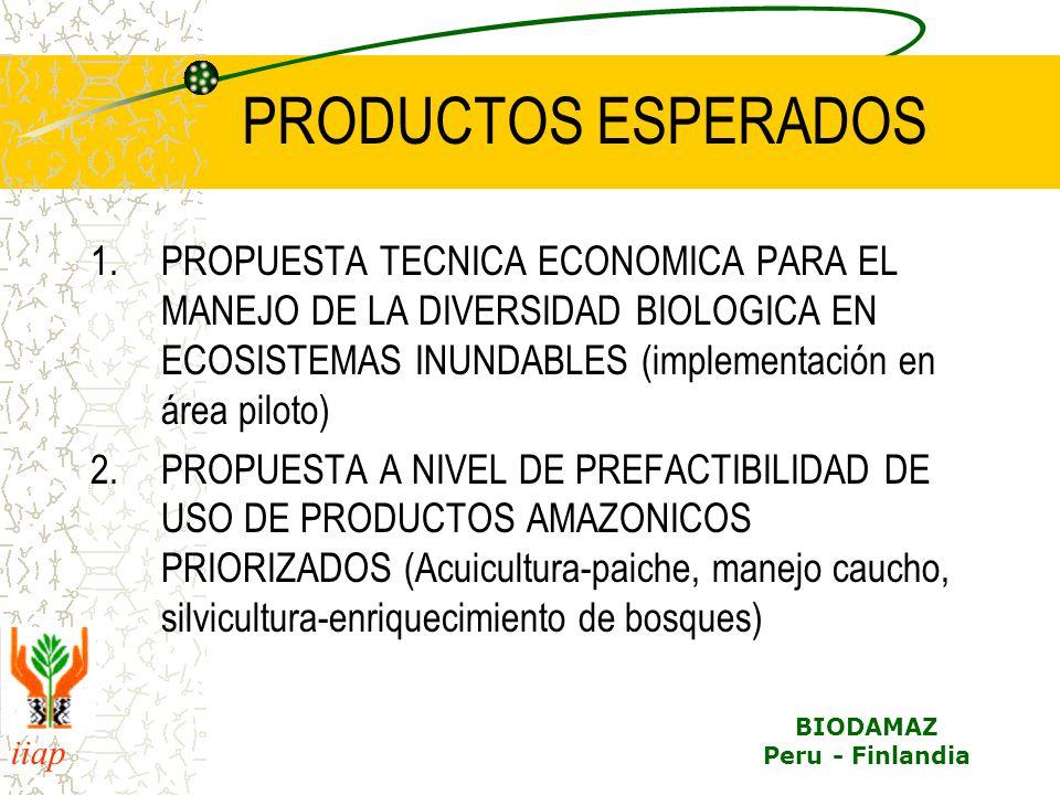 iiap BIODAMAZ Peru - Finlandia PRODUCTOS ESPERADOS 1.PROPUESTA TECNICA ECONOMICA PARA EL MANEJO DE LA DIVERSIDAD BIOLOGICA EN ECOSISTEMAS INUNDABLES (implementación en área piloto) 2.PROPUESTA A NIVEL DE PREFACTIBILIDAD DE USO DE PRODUCTOS AMAZONICOS PRIORIZADOS (Acuicultura-paiche, manejo caucho, silvicultura-enriquecimiento de bosques)