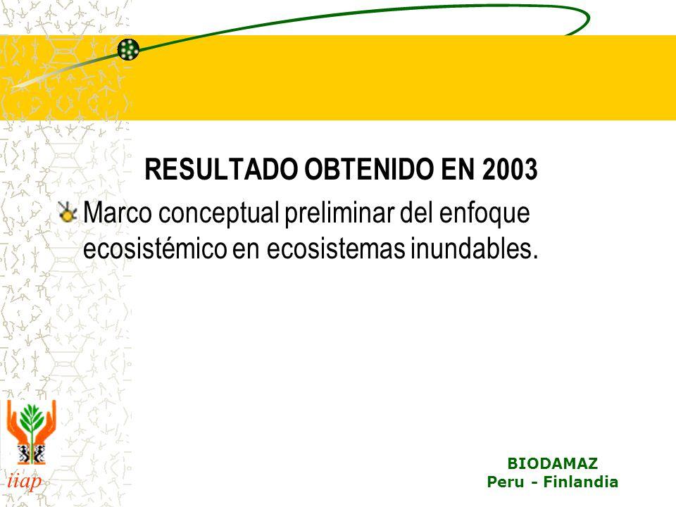 iiap BIODAMAZ Peru - Finlandia RESULTADO OBTENIDO EN 2003 Marco conceptual preliminar del enfoque ecosistémico en ecosistemas inundables.