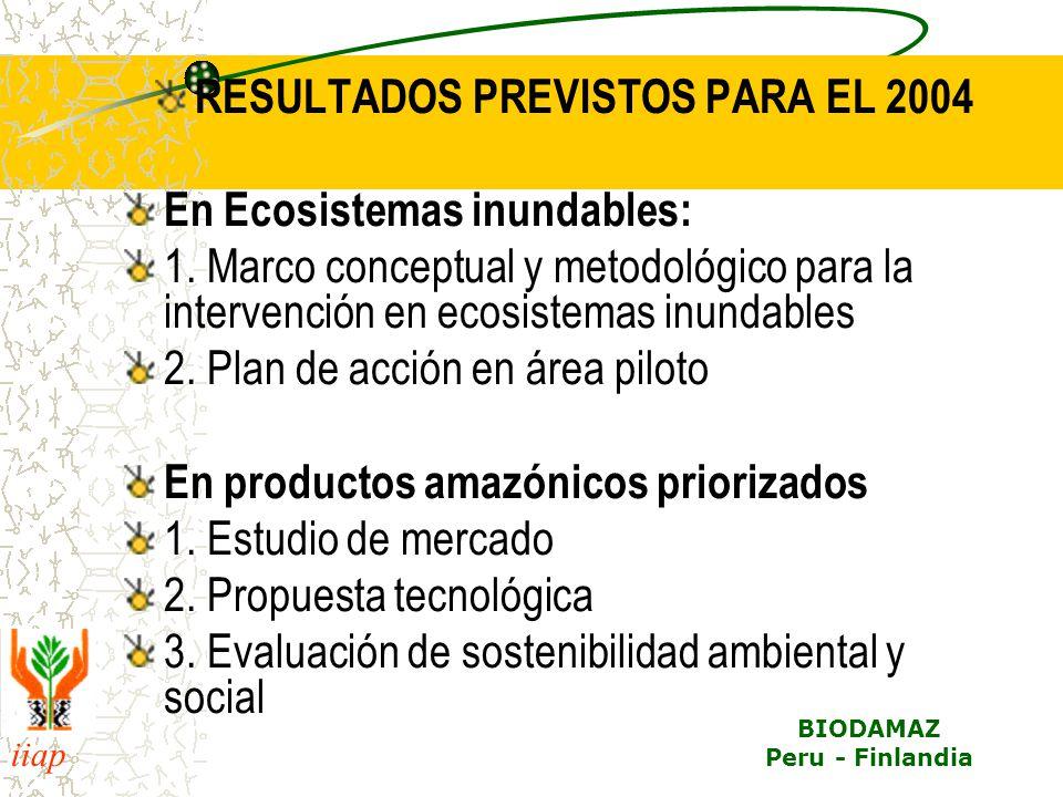 iiap BIODAMAZ Peru - Finlandia RESULTADOS PREVISTOS PARA EL 2004 En Ecosistemas inundables: 1. Marco conceptual y metodológico para la intervención en