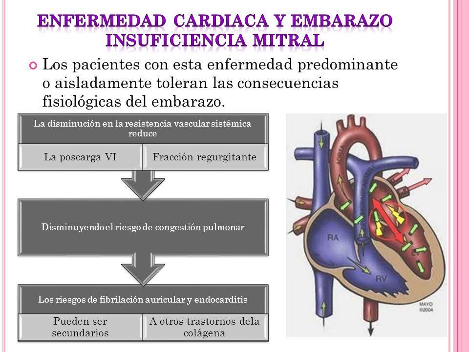 Los pacientes con esta enfermedad predominante o aisladamente toleran las consecuencias fisiológicas del embarazo. Los riesgos de fibrilación auricula
