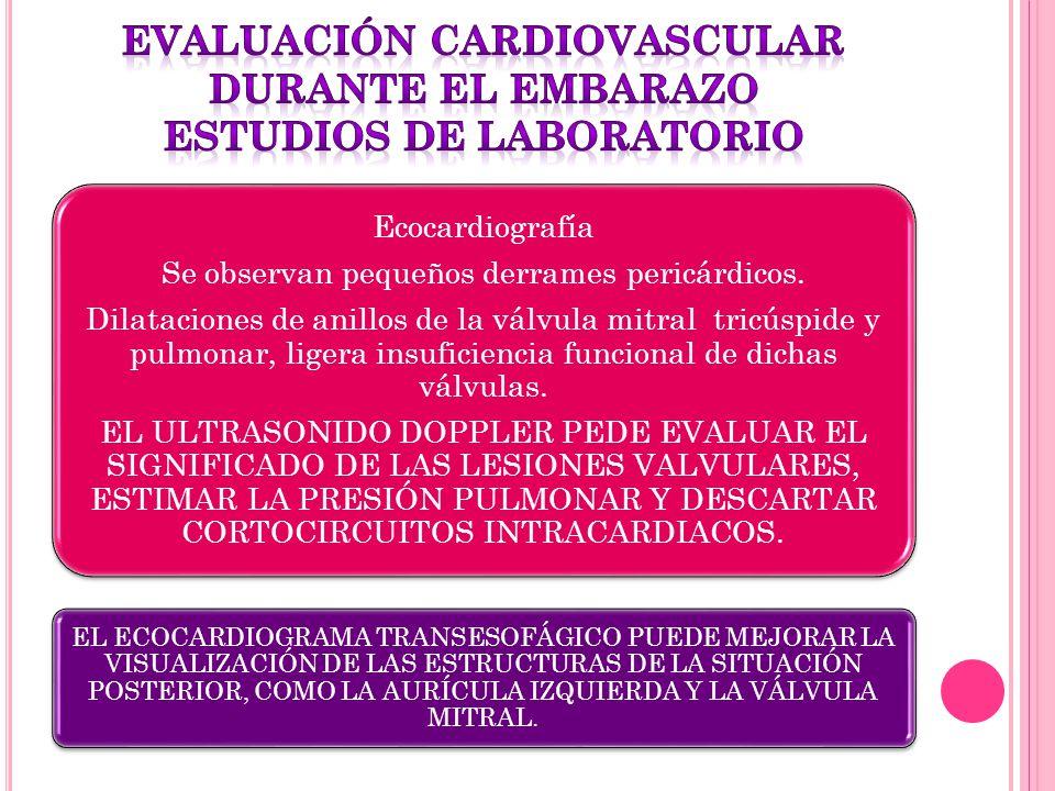 Ecocardiografía Se observan pequeños derrames pericárdicos. Dilataciones de anillos de la válvula mitral tricúspide y pulmonar, ligera insuficiencia f